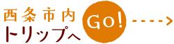 shimanamai_go